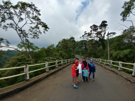 jembatan rute batang dieng