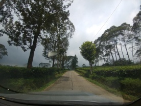 jalur rute batang dieng - kebun